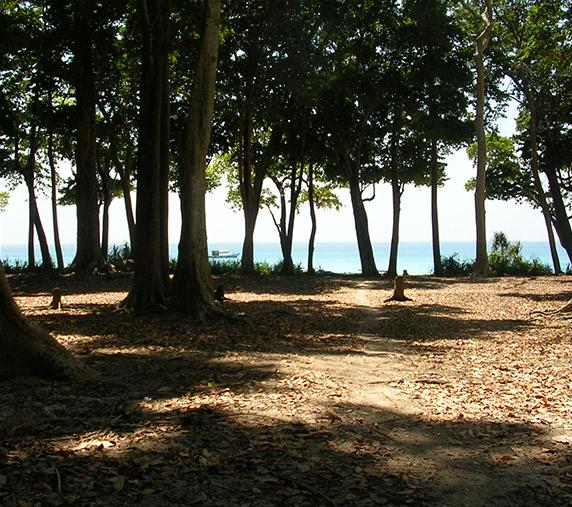 Barefoot Holidays Memorable Andamans